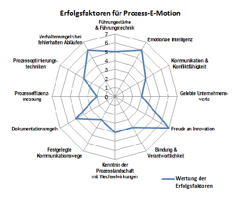 Erfolgsfaktoren_Process-E-Motion